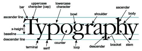 Art Inspired / Typography